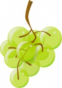 green-grapes-clip-art